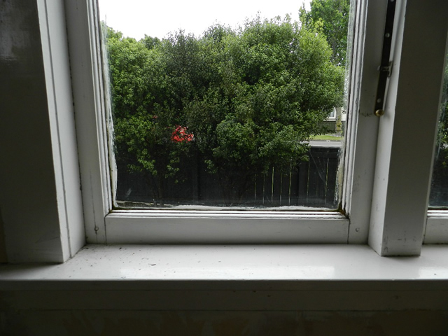 existing TImber WIndow before 2  (two)